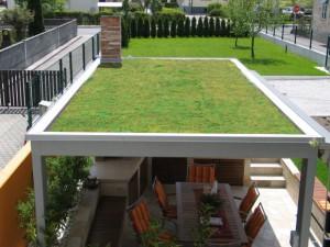 ravna-streha-1